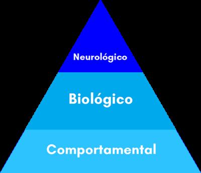 3-mecanismos-para-incentivar-os-hormônios-do-sono-bebe-dorminhoco-10k